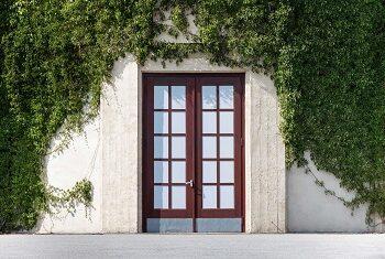 Drzwi balkonowe na białej ścinie z pnączami.